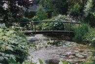 Альбом:  Садовые мостики